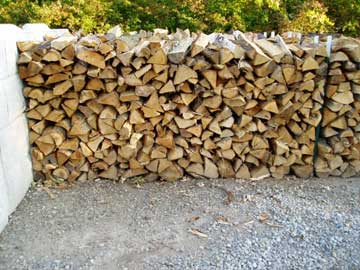 Photo: More Firewood!