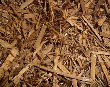 Photo: Cypress Mulch