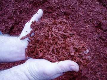 Photo: Timber Ridge Red Wood Mulch
